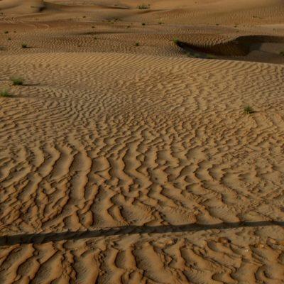 Nahel UAE