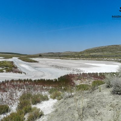 Salt marshes (Madrid, Spain)