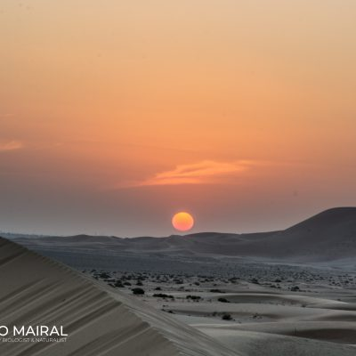 Sunset in United Arab Emirates