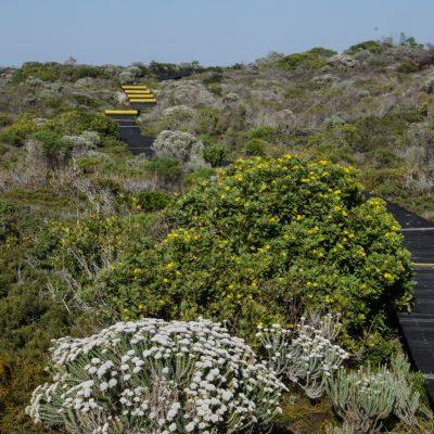 De Mond Nature Reserve