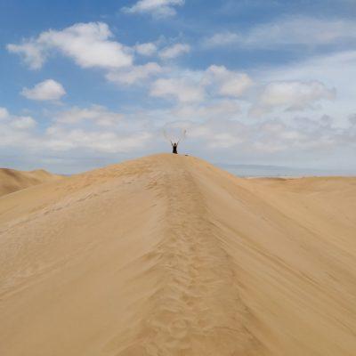 Dune number 7
