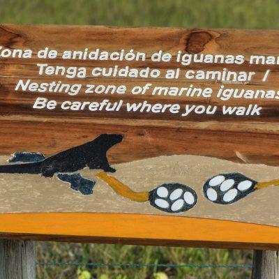 Nesting zone